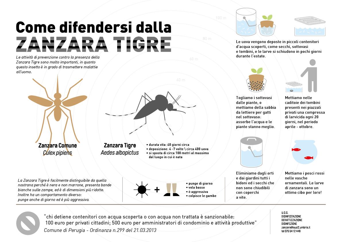 Zanzara tigre lasciamola senza acqua perugia per for Larve zanzare